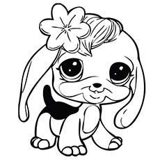 Lps Beagle Printable Animal Coloring Pages Dog Coloring Page