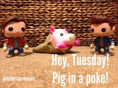 Pig in a poke Winchester Boys, Winchester Brothers, Supernatural Fan Art, Pop Figures, Destiel, Getting Old, Puppies, Funny, Animals