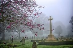 Beautiful Cemetery