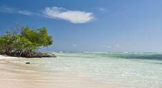 Little Cayman Island.