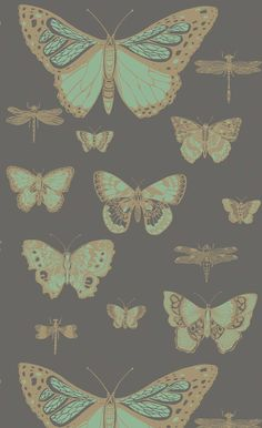 Papier peint Butterflies & Dragonflies - Cole and Son