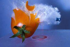 High Speed Photography by Alan Sailer