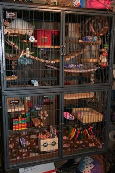 Great Ferret Nation chinchilla cage setup. I love the wooden ledges with the fleece pillows. They're so cute.