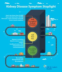 When should you seek treatment for kidney disease complications? If you have chronic kidney disease, use our Symptom Stoplight to know what symptoms need treatment immediately and when you need to notify your doctor. Treatment For Kidney Disease, Kidney Disease Symptoms, Heart Failure Symptoms, How To Stop Coughing, Rapid Heart Beat, Heart Care, Muscle Weakness, Emergency Care, Emergency Department