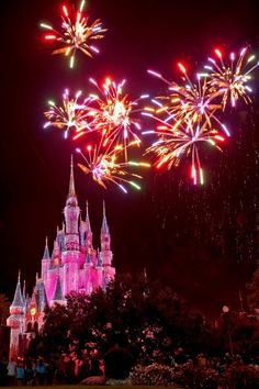 New Year fireworks display = former Fantasy in the Sky display? See you in January, Magic Kingdom.
