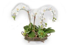 """2515 Orchids in Small Filigree Tray 21""""x20"""""""