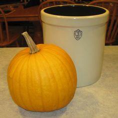 How to Make Pumpkin Wine @ Common Sense Homesteading