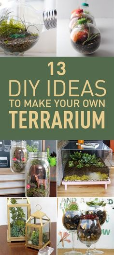 A Terrarium is just a tiny indoor garden that is put inside a container. Terrariums are usually used as decorative items inside the house, and they do this perfectly. Terrariums usually add life to the room where they're placed in, they can make the room feel green and peaceful. Plants used in terrariums are usually low-maintenance plants, so you don't have to worry about taking care of them. Various ways exist to make your own terrarium, and here are some of the best.