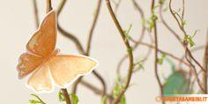 Farfalle Stampare Decorazioni