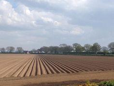 Symmetry - ploughed field