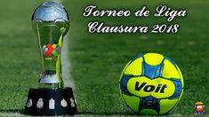 Blog de palma2mex : Regresa la Liga MX – Torneo Clausura 2018