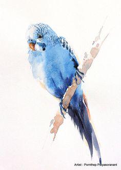 Resultado de imagen para aves acuarela
