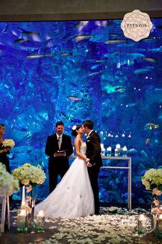 Wedding at an aquarium! Link: http://lapapeteriediva.com.br/2012/03/16/eventos-casamento-no-aquario/