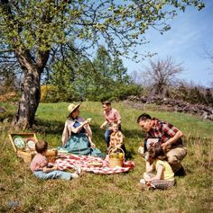 May 3, 1955. Family picnicking and barbecuing outdoors. Color transparency from photos by Arthur Rothstein and Bob Dierks for the Look magazine assignment America Is Bit by the Barbecue Bug.