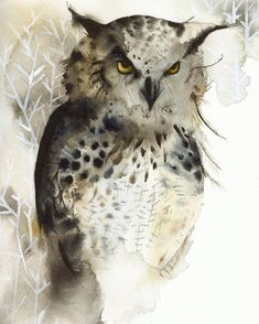 Great horned owl archival watercolor print by Amber Alexander