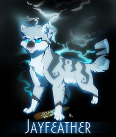 Jayfeather and his magic stick