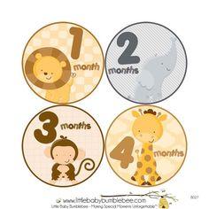 Monthly Milestones Stickers