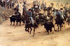 El Embudo. Encierro de Cuellar. Segovia