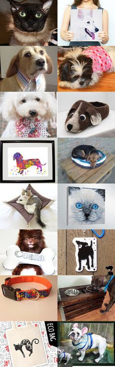 Our beautiful pets ! by Ela Decors on Etsy--Pinned with TreasuryPin.com