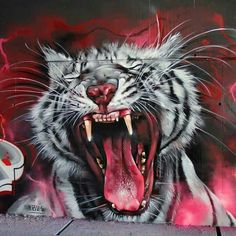 Wild Cat #streetart