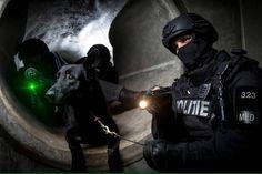 De dienst speciale interventies (DSI) 🇳🇱 #dienstspecialeinterventies #nlmilitary _______________________________________________ //@noventas_defensie