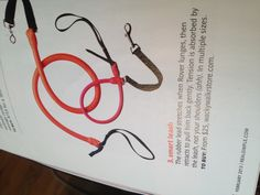 Smart leash - rubber lead stretches when dog lunges, then retracts to pull him back gently.  Tension is absorbed by leash, not your shoulders.  $25 wackywalkrstore.com.  Saw in Real Simple
