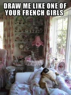 Marie Antoinette and pugs.