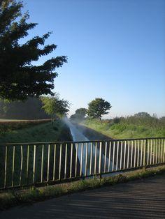 Morgens am Randkanal, Foto. K. Linnartz