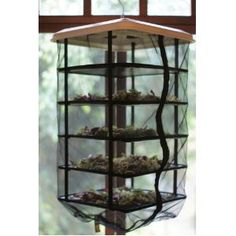 This is neat, You can dehydrate or sprout seeds and wheatgrass with no electricity.   Homestead Survival