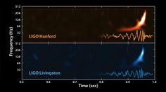 Un document historique : les ondes gravitationnelles, émises par la fusion de deux trous noirs, enregistrés ensemble par les deux interféromètres de l'observatoire américain Ligo, situés à 3000 kilomètres l'un de l'autre. Document Ligo/NSF.