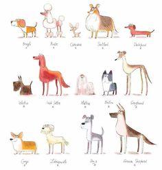 The Secret Life Of Pet Illustration 39 Super Ideas Cartoon Drawings, Animal Drawings, Art Drawings, Dog Illustration, Character Illustration, Animal Doodles, Secret Life Of Pets, Dog Art, Doodle Art