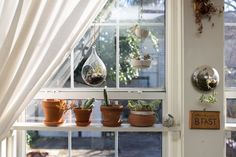 House Tour: A Nature-Filled New Orleans Home | Apartment Therapy