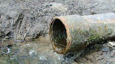 JORDEN ER GIFTIG. Jorden er giftig: 50 år før giftige grunde er renset. Det vil…