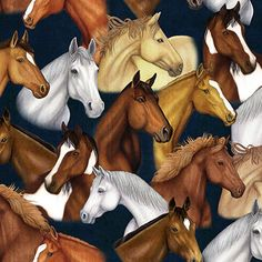 Mustang Sunset Packed Horses Navy fabric by Dan Morris for Quilting Treasures. Allover print with packed horses on a navy background. This fabric is 44 inches wide and cotton. Horse Quilt, Horse Fabric, Cute Wallpaper Backgrounds, Cute Wallpapers, Native American Patterns, Sunset Pictures, Like Animals, Horse Art, Beautiful Horses