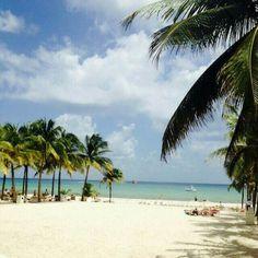 Playa del Carmen. Quintana Roo.