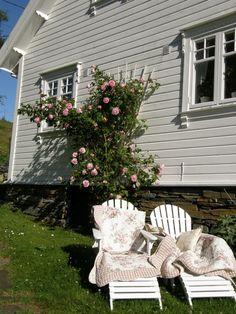 Husmannsplassen i Hidlesundet: Drømmer om sommeren.