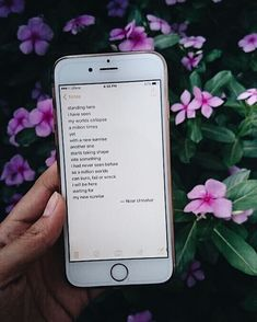 — with a new sunrise  // poetry at unexpected places pt. 35 by noor unnahar  // quotes words poetic artsy iphone, tumblr hipsters teen aesthetics indie grunge floral, instagram photography ideas inspiration //