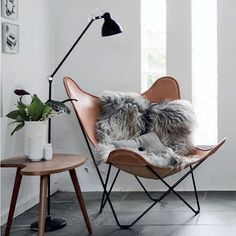 Want to get my hands on the Hardoy butterfly chair #hardoy #hardoychair #butterflychair #decor #design #designerchair #styling #interior #interiordecor #interiordesign #interiorstyling #homedecor #homestyling #honeyimhome #honeyimhomeinteriors