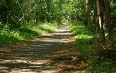 The Rail Trail in CT