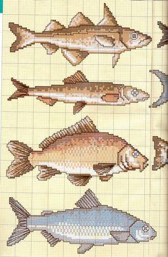 I like the blue fish on the bottom. Cross Stitch Sea, Cross Stitch Animals, Cross Stitch Charts, Cross Stitch Patterns, Cross Stitching, Cross Stitch Embroidery, Embroidery Patterns, Knitting Charts, Fabric Manipulation