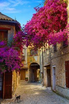 Provence.France