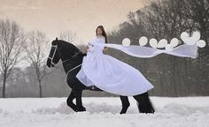 Horse Photography: Gosia Mąkosa