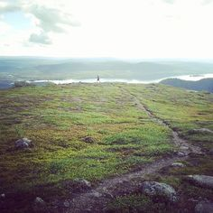 Find your own trails for the perfect run, this one on Nalovardo near, Sorsele in Swedish Lapland #trailrun, #solitude