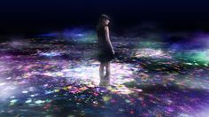 Flowers and People on the Water - Spring of Herbal Flowers | teamLab / チームラボ