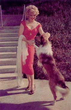 Marilyn Monroe and lassie