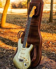fender american stratocaster plus deluxe ultra tone bold and beautiful