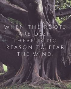 Let your roots grow down into Him (Colossians 2:7) #pointharbor #lovegrowserve
