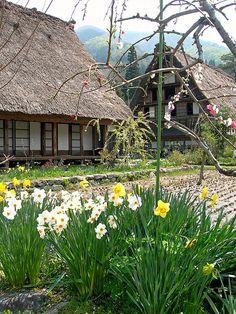 Spring in Shirakawago