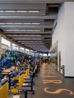 Weight room with linear direct/indirect pendant lighting