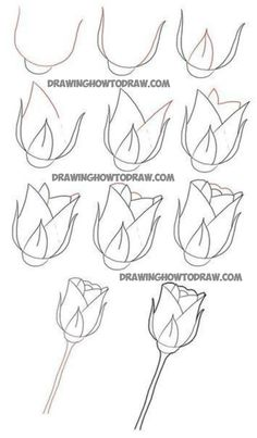 Easy roses to draw how do you draw a rose easy steps flower easy rose drawing roses drawing tutorial easy rose flower drawing easy video Drawing Lessons, Drawing Techniques, Drawing Tips, Drawing Sketches, Drawing Ideas, Basic Drawing, Bird Drawings, Easy Drawings, Pencil Drawings